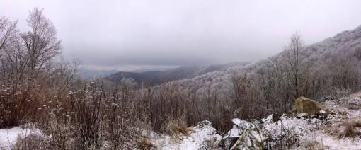 Roan Mt 2013