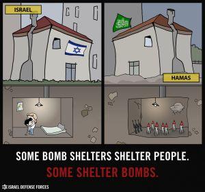 safe human_shield_eng