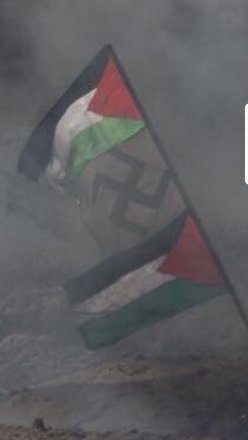 Nazi Pal flag IMG_20180407_141330