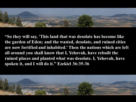 Prophesy To The Land! 6 jpg