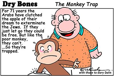Dry Bones monkey trap